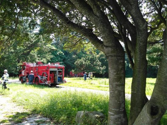 火事 in 小戸公園